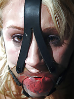 Sophie Ryan never saw this coming. The day started so well. In the beginning her bondage was tight but comfortable. Nothing stays simple.